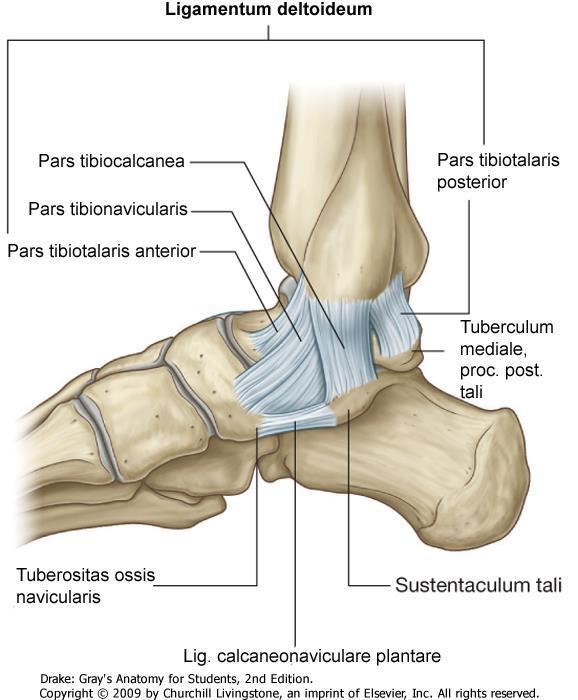A lábak ízületeinek fájdalma: okok, tünetek, diagnózis, kezelés - Arthrosis