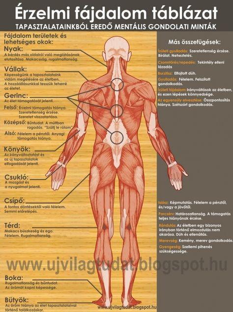 fáj ahol a csípőízület)
